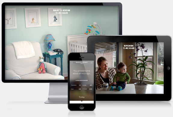 Access the Canary app on mobile or desktop